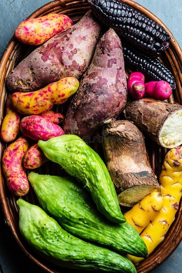 Ny peruansk latin - amerikansk grönsakcaigua, sötpotatisar, svart havre, camote, yuca arkivbild