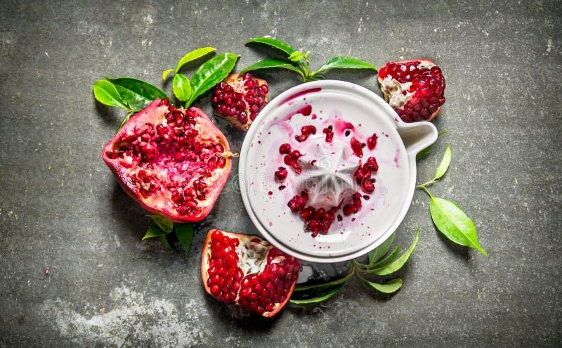 ny pomegranatered royaltyfri fotografi