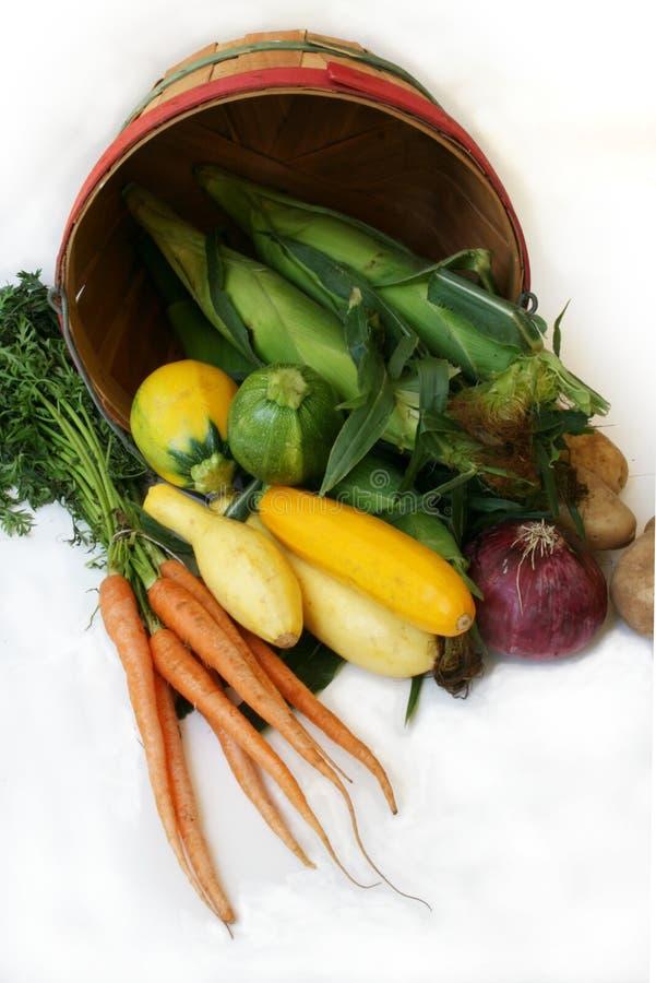 ny produce för korglantgård royaltyfria foton