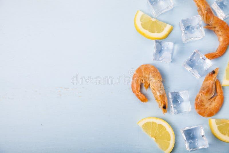 Ny räka med citronen på is royaltyfria bilder