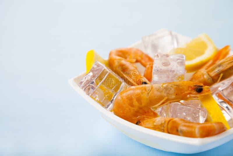 Ny räka med citronen på is arkivfoto