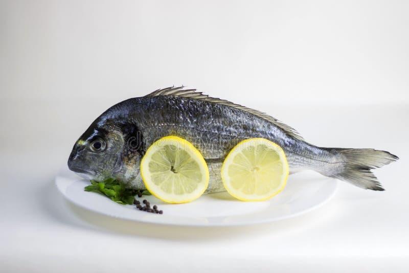 Ny, rå okokt hel doradofisk eller havsbraxen arkivfoto