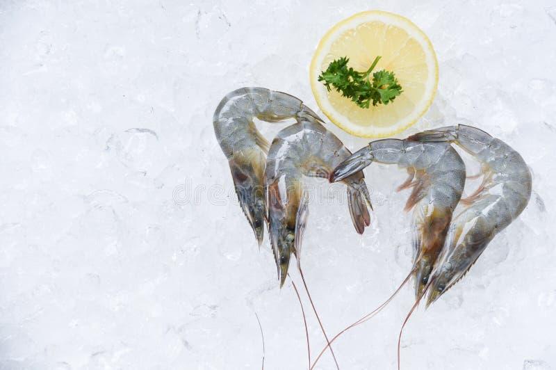 Ny rå räkaräkor och citronisbakgrund i den havs- supermarket arkivfoto