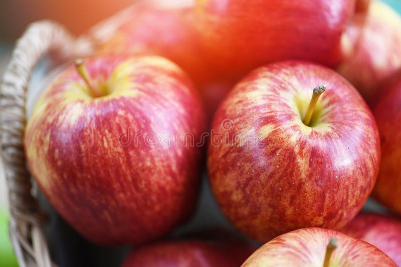 Ny röd äpplefruktträdgård - skördäpplet i korgen bär frukt mot efterkrav trädgården royaltyfria foton
