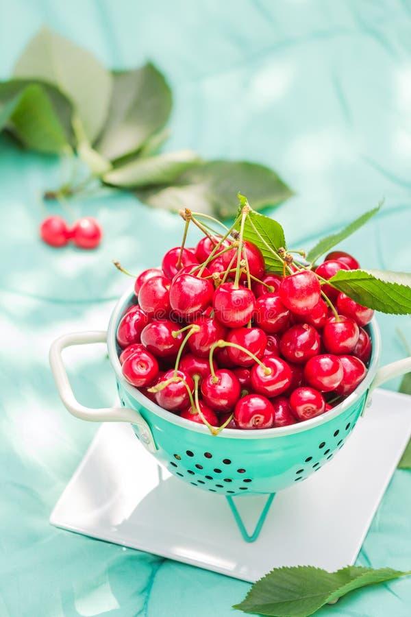 Ny röd körsbärsröd fruktgräsplandurkslag arkivbild