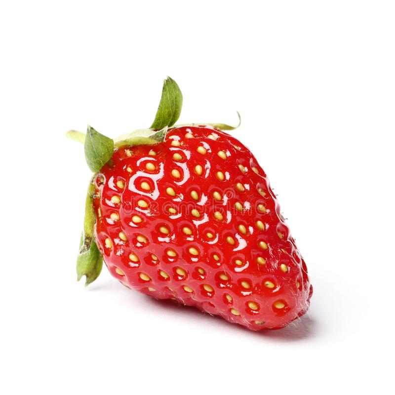 Ny r?d jordgubbe som isoleras p? vit bakgrund arkivfoto