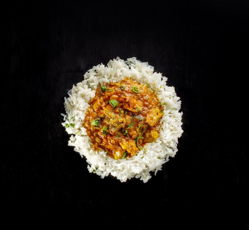 Ny ragu av nötkött och griskött med ris royaltyfria foton