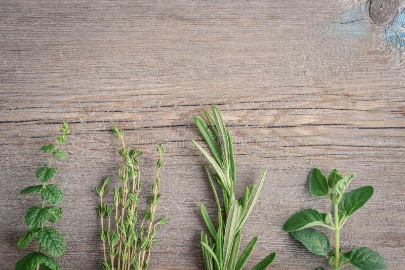 Ny rosmarin, oreganon, timjan och pepparmint arkivbild