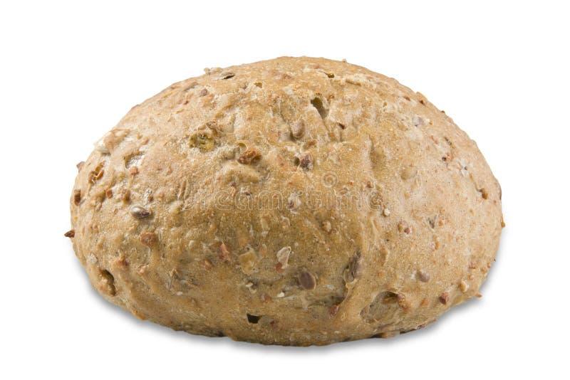 ny rulle för bröd royaltyfri foto