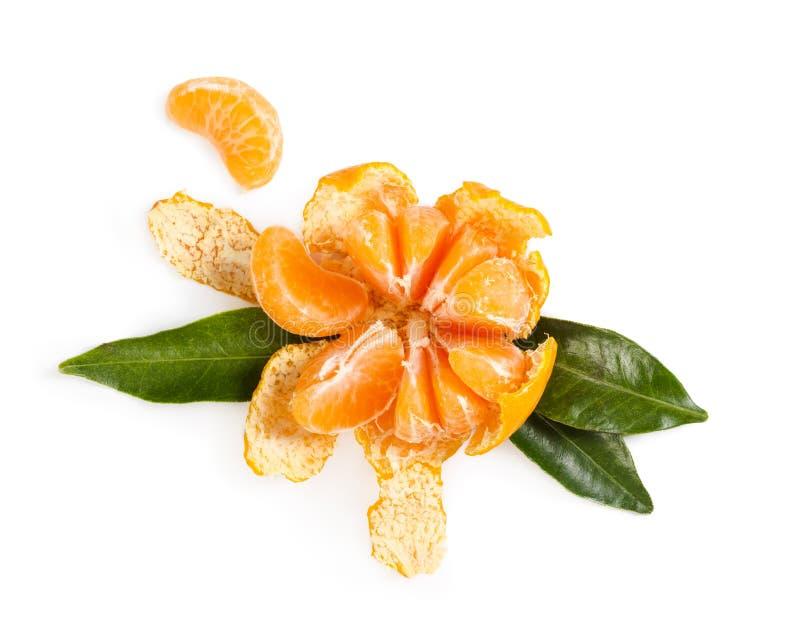 Ny saftig mandarin på vit bakgrund arkivbilder