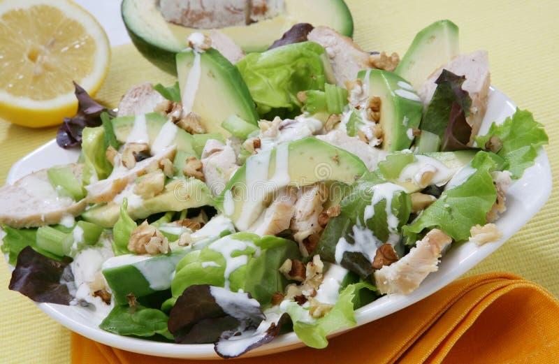 ny sallad för avokado arkivfoto