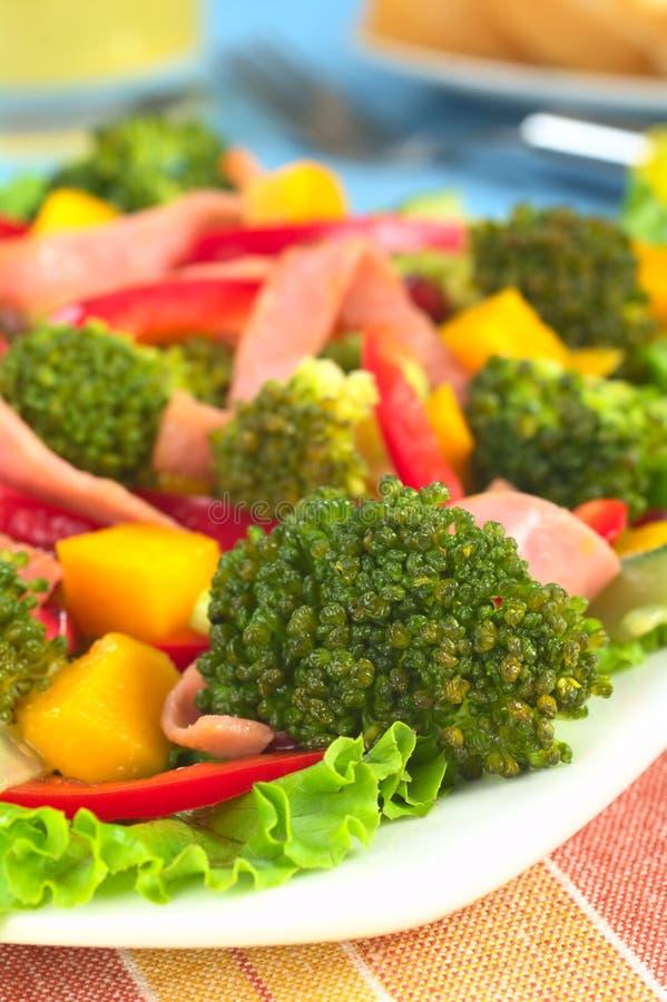Download Ny sallad för broccoli fotografering för bildbyråer. Bild av frukt - 19775137