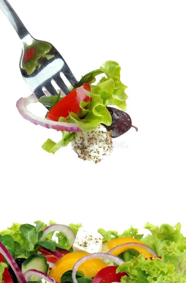 ny sallad för gaffel royaltyfri fotografi