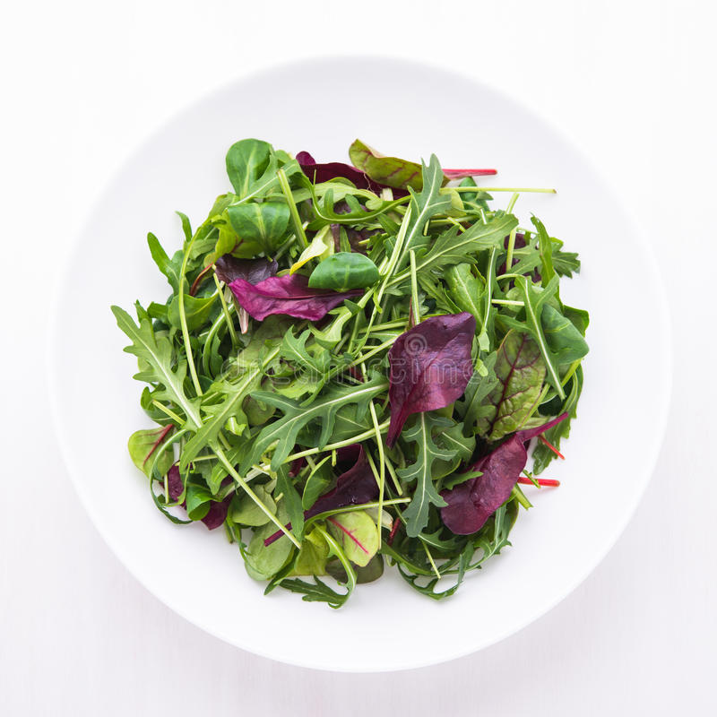 Ny sallad med blandade gräsplaner & x28; arugula mesclun, mache& x29; på bästa sikt för vit träbakgrund royaltyfri fotografi