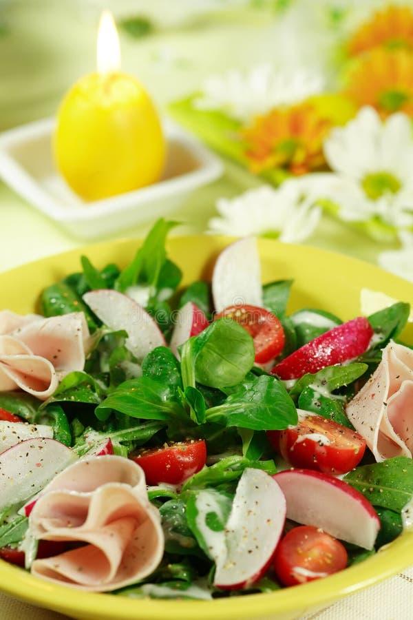 ny salladfjädergrönsak royaltyfria bilder
