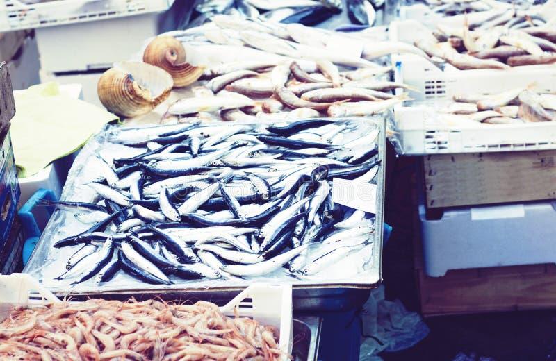 Ny skaldjur och att fiska till salu i fiskmarknaden Pescheria av Catania, Sicilien, Italien royaltyfri fotografi