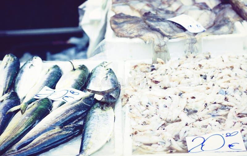 Ny skaldjur och att fiska till salu i fiskmarknaden Pescheria av Catania, Sicilien, Italien arkivfoton