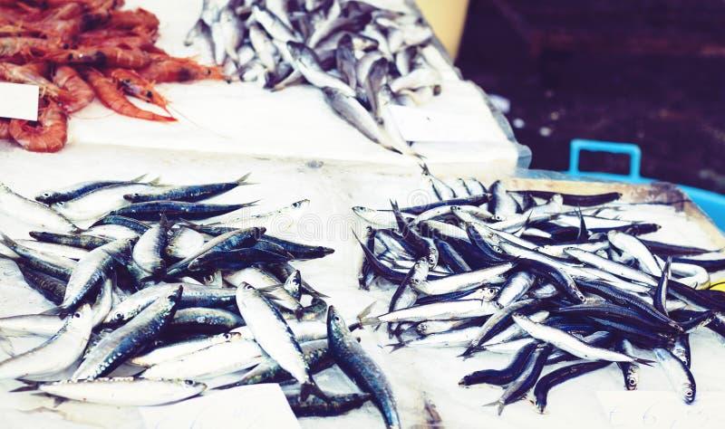 Ny skaldjur och att fiska till salu i fiskmarknaden Pescheria av Catania, Sicilien, Italien royaltyfria foton