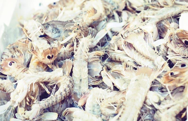 Ny skaldjur som ?r till salu i fiskmarknaden Pescheria av Catania, Sicilien, Italien arkivfoton