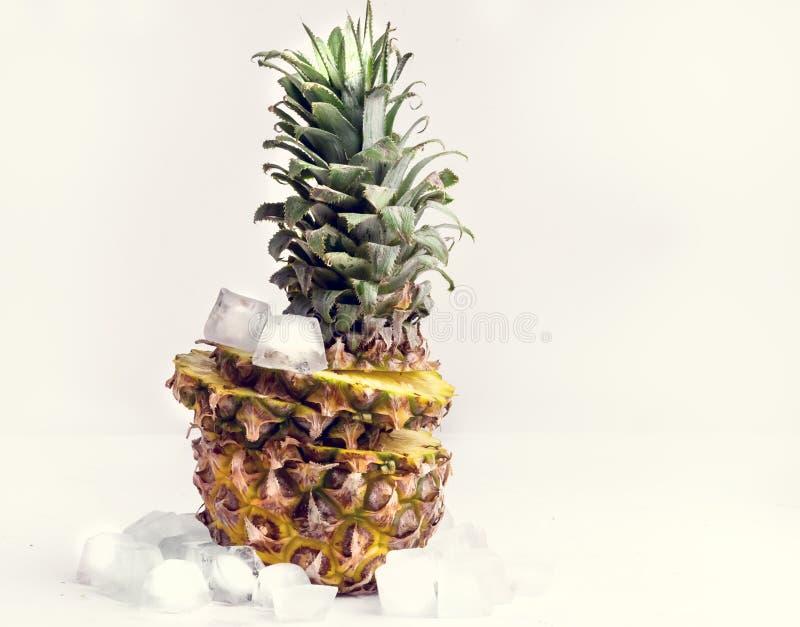 Ny skivad ananas med iskuben på vitt tonat bakgrundskopieringsutrymme royaltyfri fotografi
