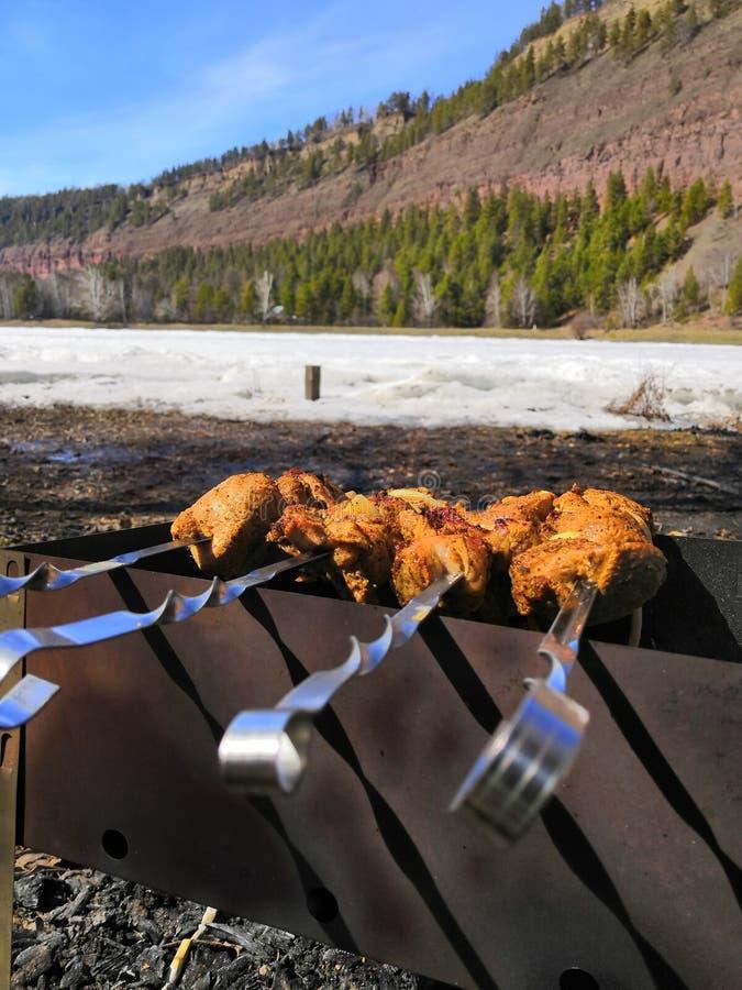 Ny smaklig grillfest med köttkebab i fyrpanna utomhus royaltyfri fotografi