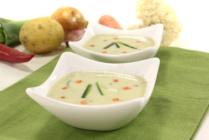ny soupgrönsak arkivbild