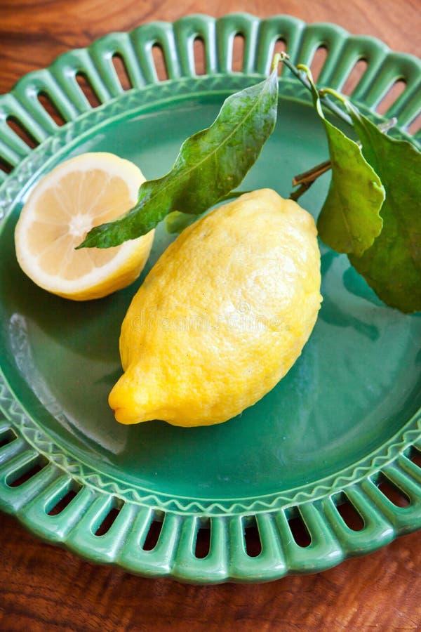 Ny stor citron royaltyfri bild