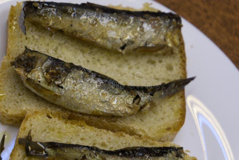 Ny stor liten stackare Fisken av Salak ligger på isen royaltyfri foto