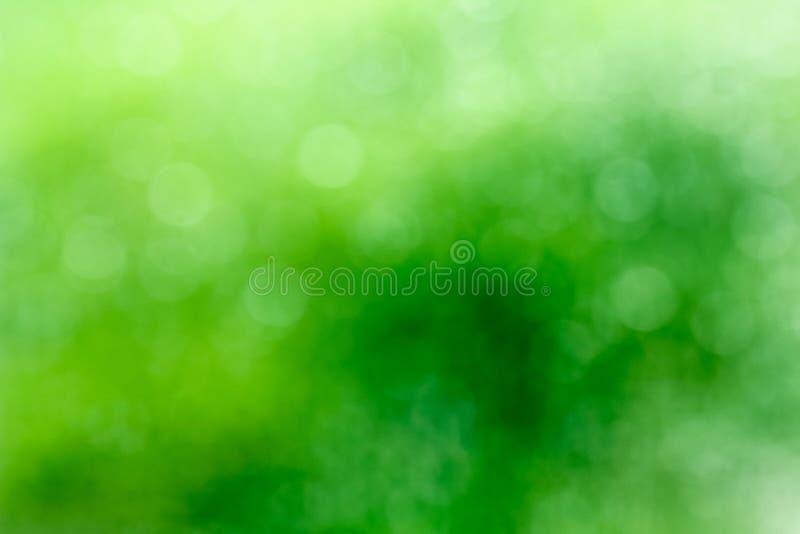 Ny sund grön bio bakgrund med abstrakt suddig lövverk royaltyfri foto