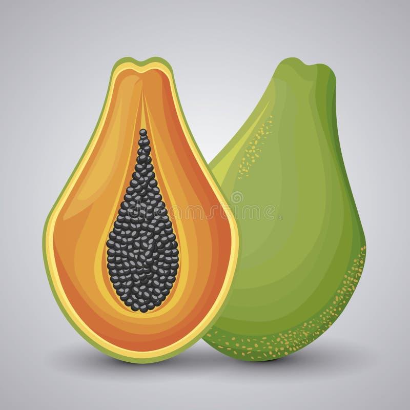 Ny sund papayafrukt stock illustrationer