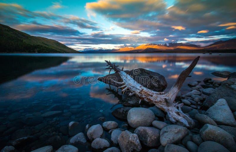 ny tekapo zealand för lake arkivbilder