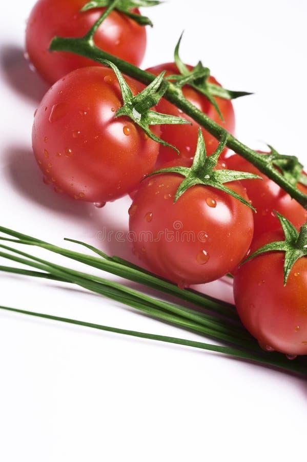 Ny tomater och gräslök arkivbilder