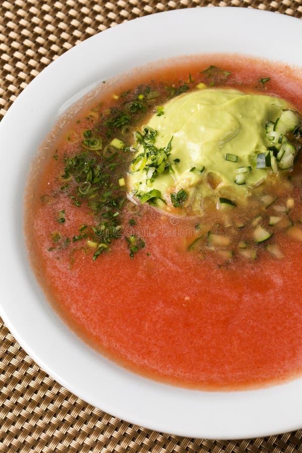 Ny tomatsoppa i en vit bunke med avokadot royaltyfri foto
