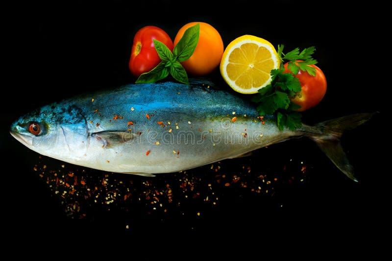 Ny tonfisk för havsfisk in med grönsaker och kryddor på en svart bakgrund royaltyfri foto