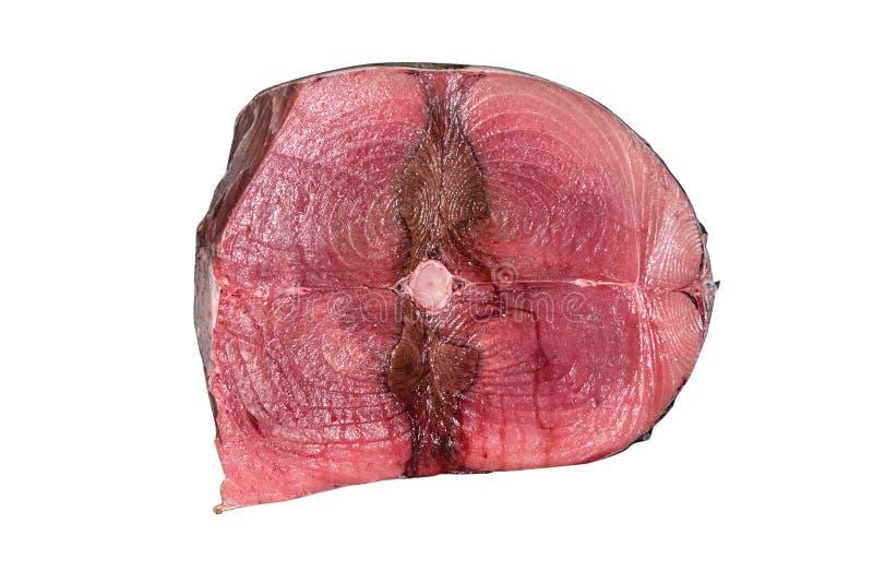 Ny tonfiskfisk royaltyfri fotografi