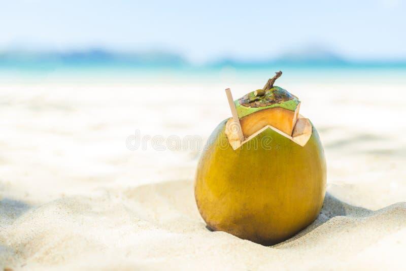 Ny ung kokosnöt som ligger på sandstrandbakgrunden med sugrör som är klart för drink royaltyfria foton