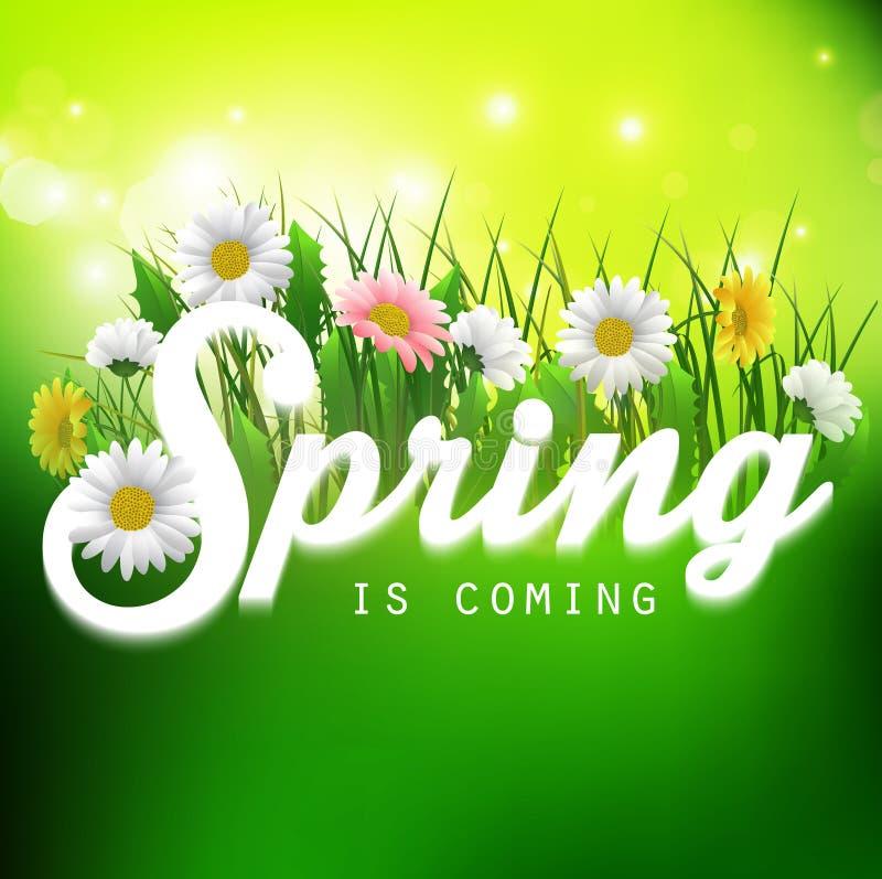 Ny vårbakgrund med gräs och blommor vektor illustrationer
