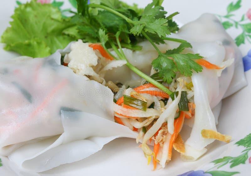 Ny vårrulle för Closeup med grönsaken och koriander i platta royaltyfria bilder