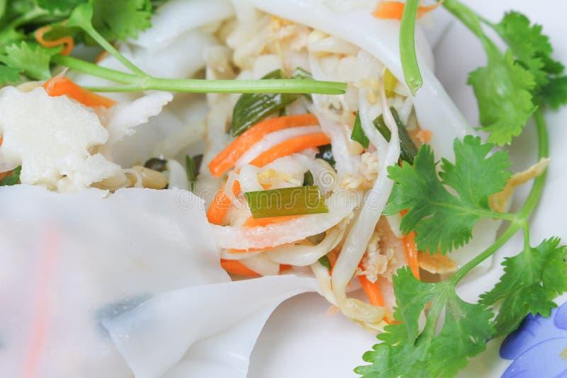 Ny vårrulle för Closeup med grönsaken och koriander i platta royaltyfri fotografi