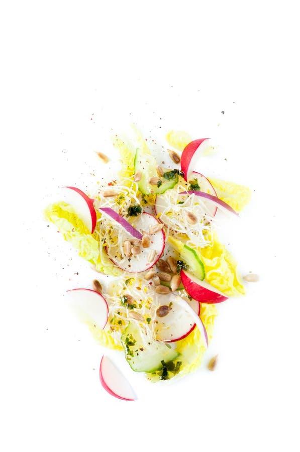 Ny vårsallad - grönsallat, rädisa, gurka, röd lök, solrosfrö och groddar royaltyfri fotografi