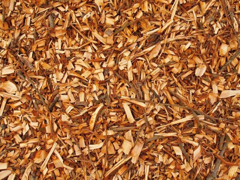 Ny våt wood chip från alträdet, textur fotografering för bildbyråer