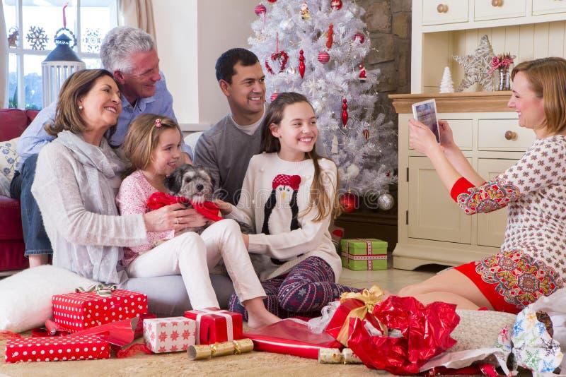 Ny valp på jul royaltyfri foto