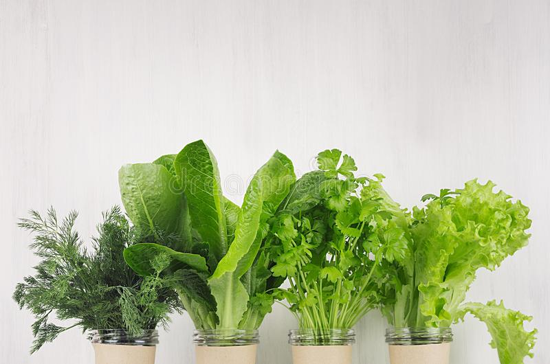Ny vegetarian som bantar växter för gröna sallader i krukor på den vita wood plankan, kopieringsutrymme Sund livsstil arkivfoton