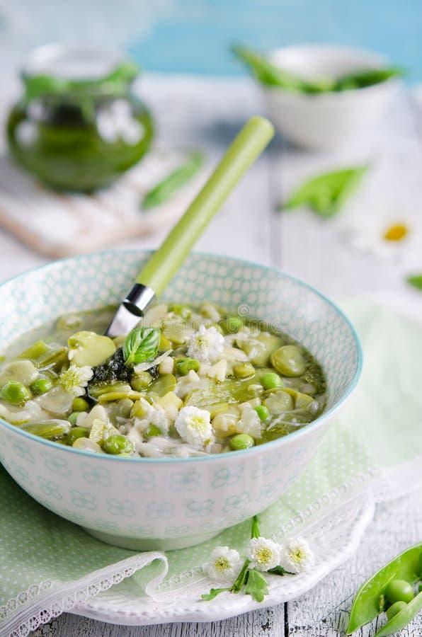 Ny vegetarisk italiensk minestronesoppa royaltyfria foton