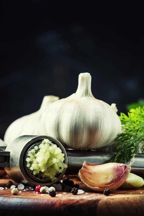 Ny vitlök, sammanpressad till och med pressen, kryddor, örter och saltar royaltyfria foton