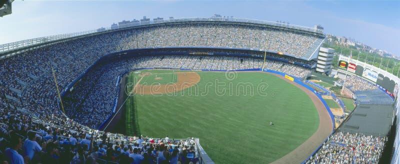 NY-Yankees V. Tampa Bay royaltyfri bild