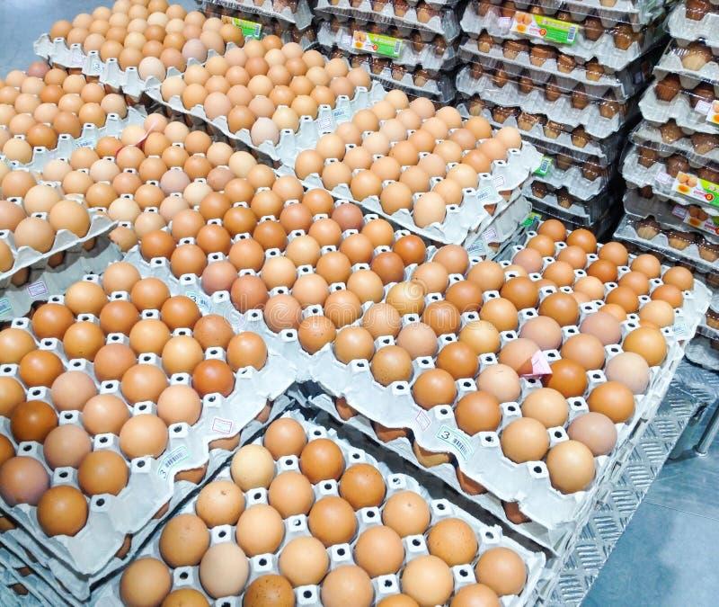 Nya ägg i bruna askar som är ordnade i till salu staplade rader in arkivfoto