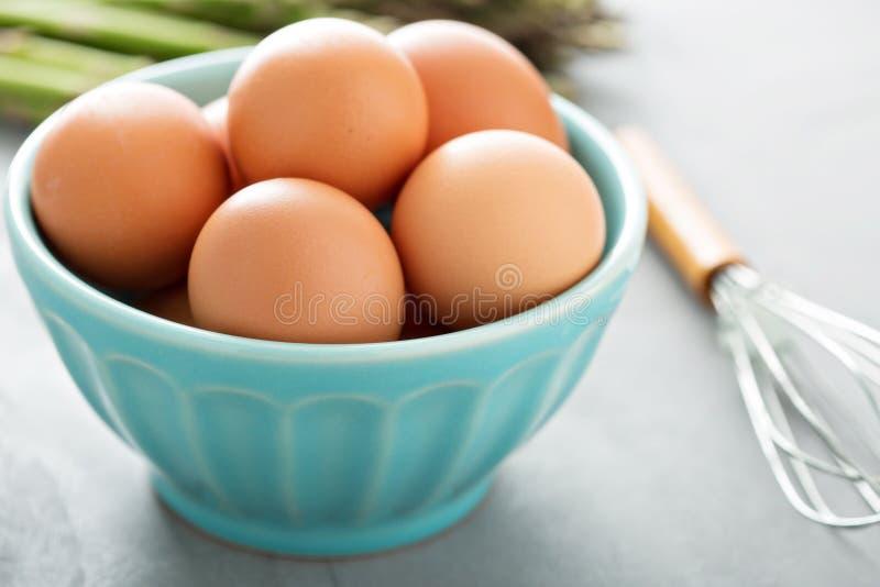 Nya ägg i en bunke med viftar royaltyfria bilder