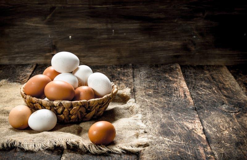 nya ägg i en korg arkivfoton