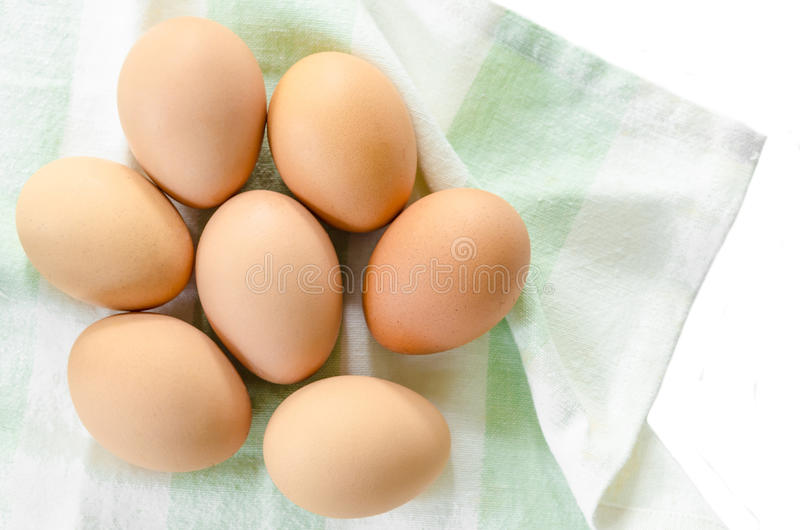 Nya ägg i tyg royaltyfri foto
